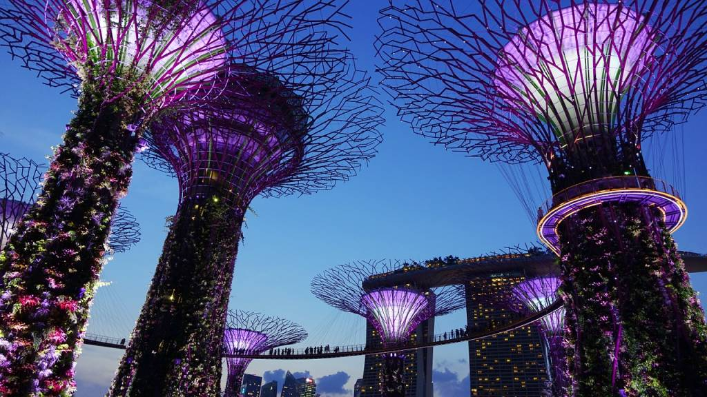Garden By The Bay Attractions singapore's 7 unique attractions - lokopoko travel